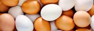 Названы продукты, не сочетающиеся с яйцами