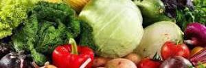 Врач перечислила «очищающие» продукты и рассказала, как восстанавливать организм в январе