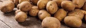 В каких случаях нельзя употреблять картофель