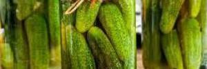 Быстрый рецепт малосольных огурцов с чесноком и укропом