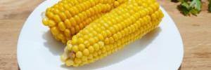 Как правильно варить кукурузу в домашних условиях