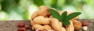 Как жарить арахис? Жарка орехов на сковороде и в духовке