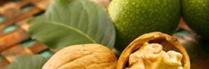 Лучшее для здоровья кишечника: как грецкие орехи предотвращают воспаление