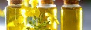 Рапсовое масло может быть вредно для мозга