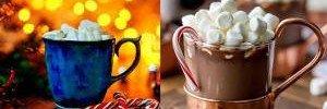 Какао много не бывает. В чем польза напитка?