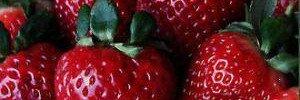 Что можно есть после отравления без вреда для организма