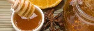 Полезные свойства клеверного меда