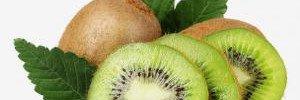 Вегетарианская диета может снизить уровень холестерина не хуже лекарств