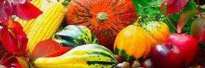 Пять самых полезных продуктов ноября