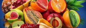 Авокадо помогает при метаболическом синдроме и ожирении