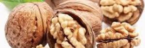 Грецкие орехи положительно влияют на бактерии в кишечнике